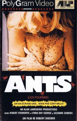 ants771